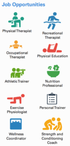 Job opportunities: physical therapist, recreational therapist, occupational therapist, physical education, athletic trainer, nutritional professional, exercise physiologist, personal trainer, wellness coordinator, strength and conditioning coach
